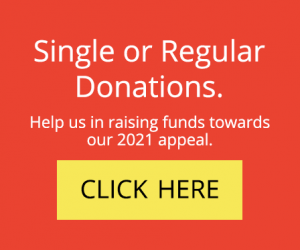 donations single, or regular, button.